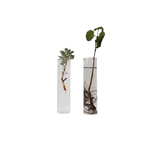Nordic Function Simply4 vase cylinder glas til blomster vase flowers